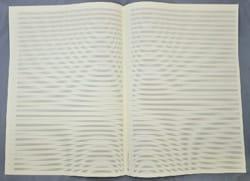 Papier à Musique - Notenpapier - 34 Spans - Großes Format - Notenpapier - di-arezzo.de