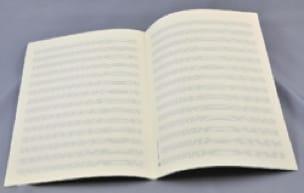 Papier à Musique - Music Paper - 14 Spans - A4 Size - Papier - di-arezzo.co.uk