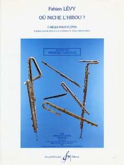 Fabien Lévy - Où niche l'hibou ? – 2 Flûtes - Partition - di-arezzo.fr