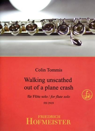 Walking unscathed out of a plane crash - Flûte solo - laflutedepan.com