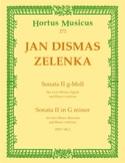 Sonate Nr. 2 g-moll - 2 Oboen Fagott BC laflutedepan.com