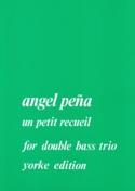 Un petit recueil - Double bass trio Angel Pena laflutedepan.com