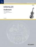 Kadenzen zum Violinkonzert von Beethoven op. 61 laflutedepan.com