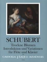 SCHUBERT - Trockne Blumen, Introduzione e Variazioni - Partitura - di-arezzo.it