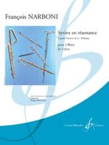 Syrinx en résonance - 3 Flûtes François Narboni laflutedepan.com