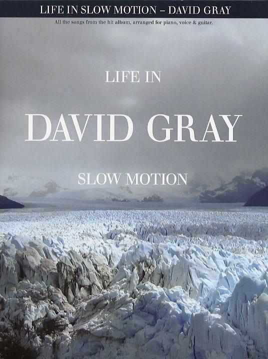 Life In Slow Motion - David Gray - Partition - laflutedepan.com