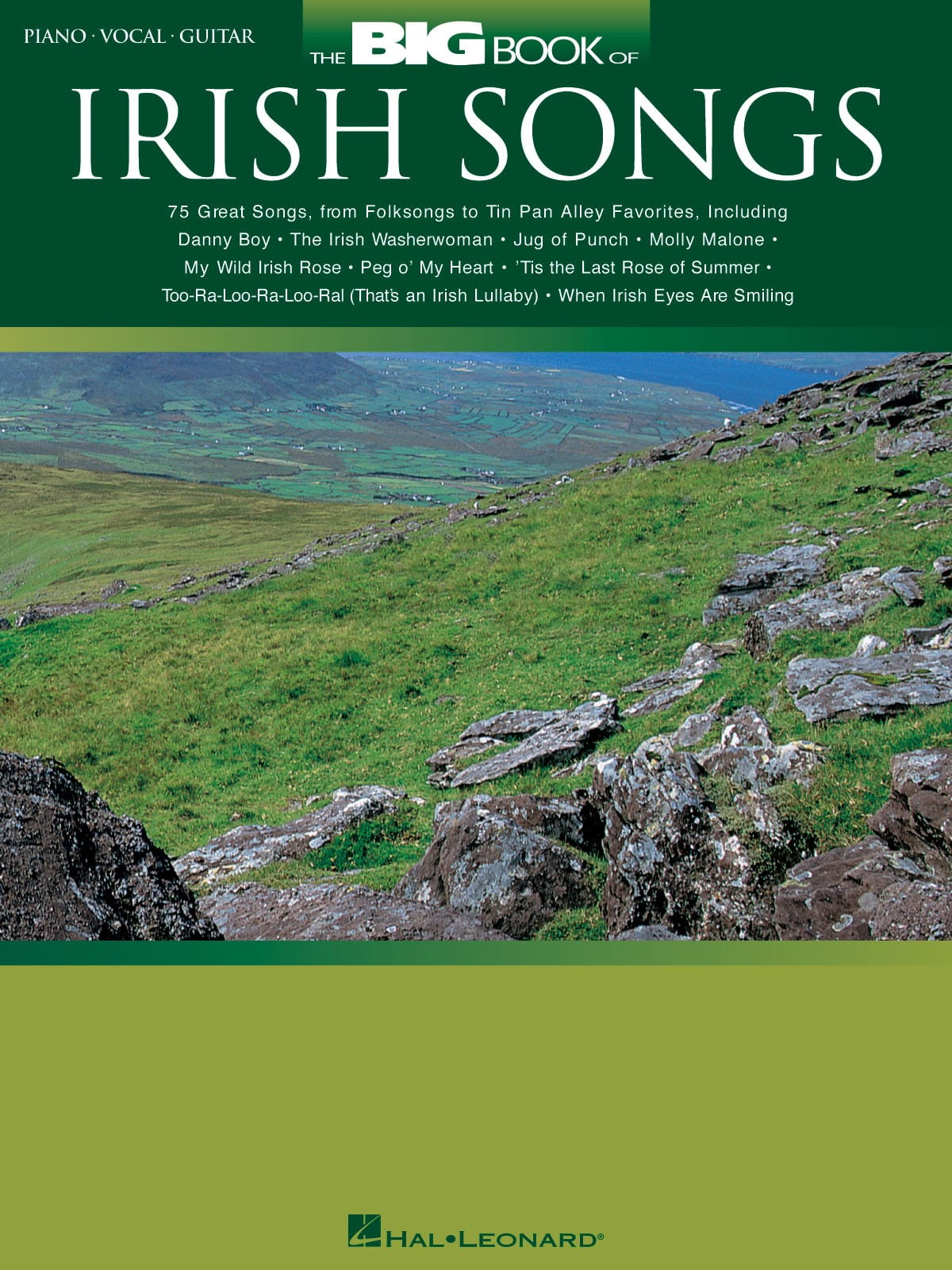 - The Big Book Of Irish Songs - Partition - di-arezzo.co.uk