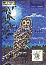 Vol de Nuit - Olivier Costa - Partition - laflutedepan.com