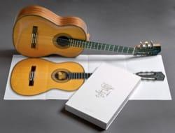 Guitares classiques en taille réelle Alberto MARTINEZ laflutedepan