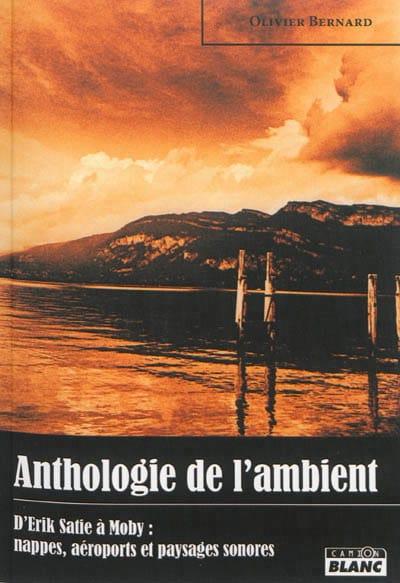 Anthologie de l'ambient : de Satie à Moby : nappes, aéroports et paysages sonore - laflutedepan.com