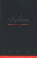 Beethoven the Ninth symphony - David Benjamin LEVY - laflutedepan.com